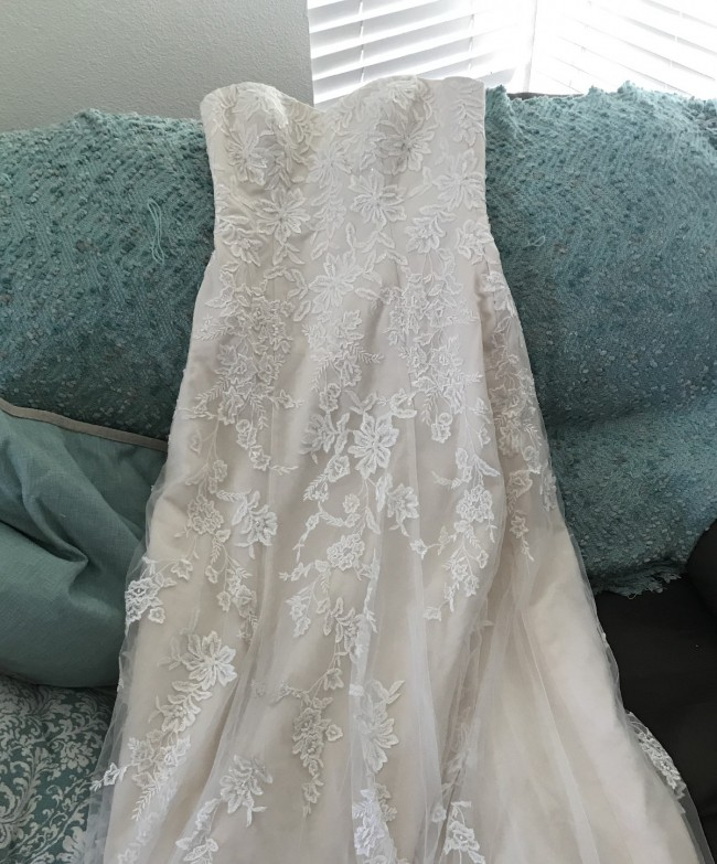 David's Bridal, Ivy Champ