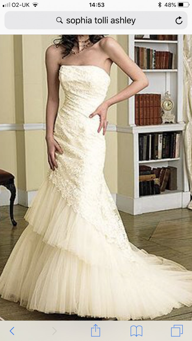 Sophia Tolli, Ashley