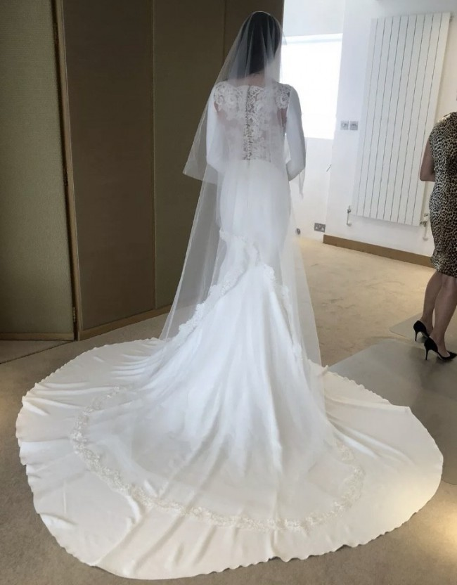 Pronovias Atelier Dress (can't find style name)