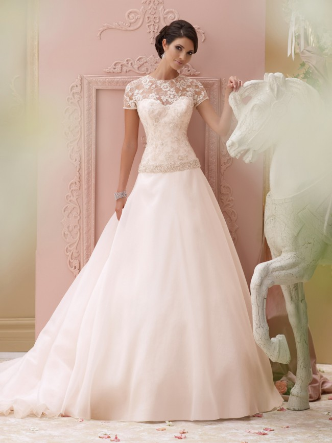 David Tutera For Mon Cheri 115252/Arabella