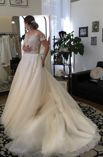 Pronovias, Ball Gown