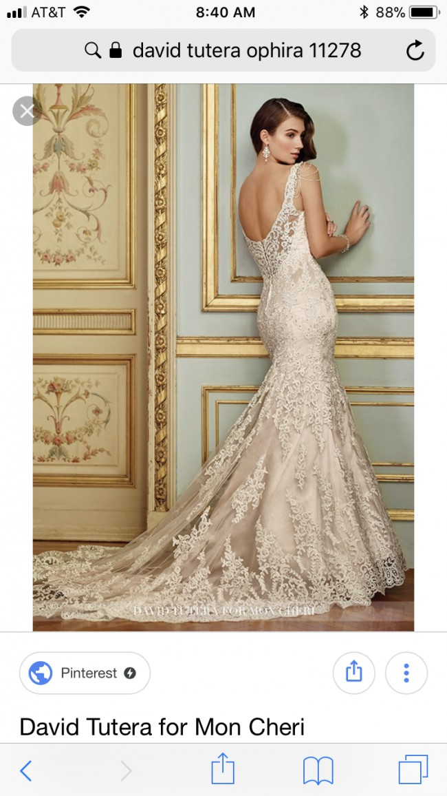 David Tutera, Ophira 11278