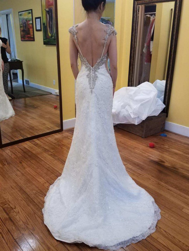 Maggie Sottero Brandy Wedding Dress (Price Negotiable)
