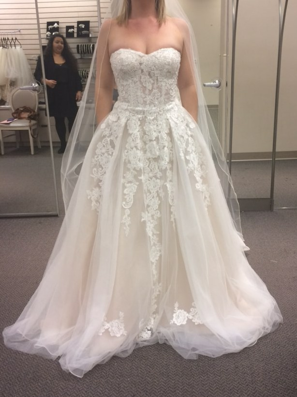 David's Bridal Collection Sheer Lace and Tulle Ball Gown -with pockets!