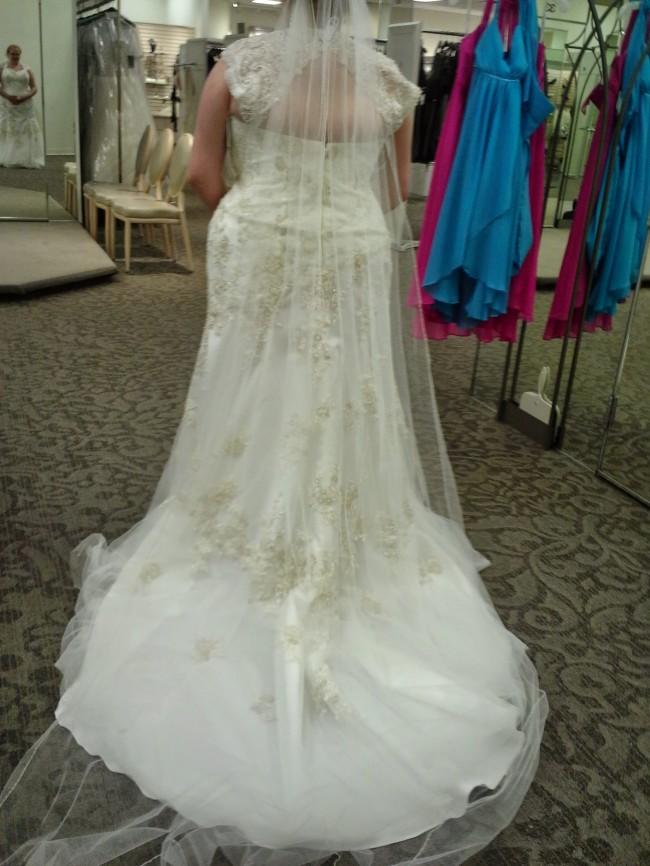 David's Bridal 9WG3640