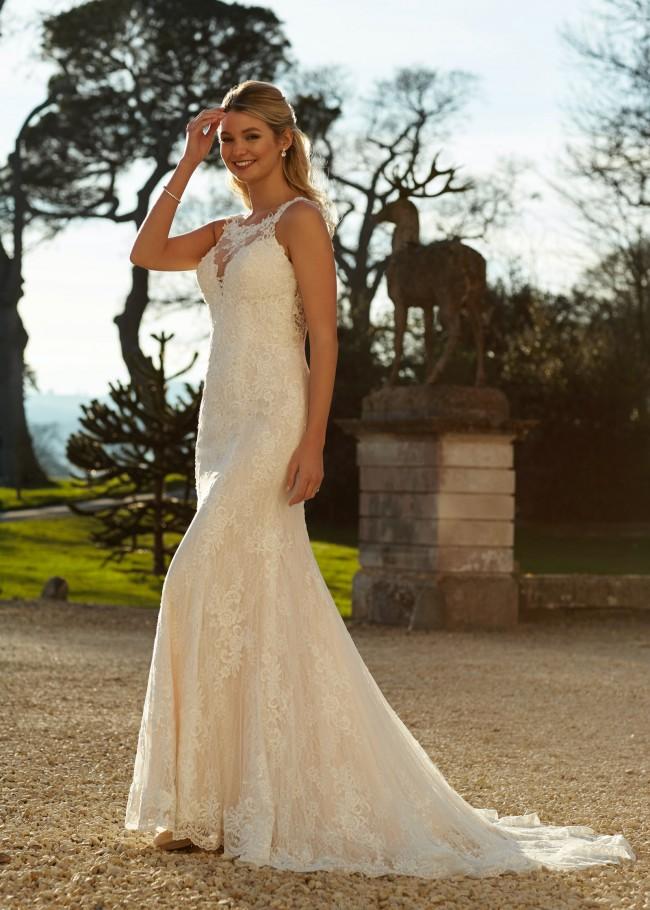 Romantica of Devon Henrietta