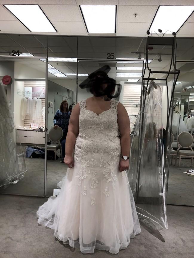 David's Bridal 13030313