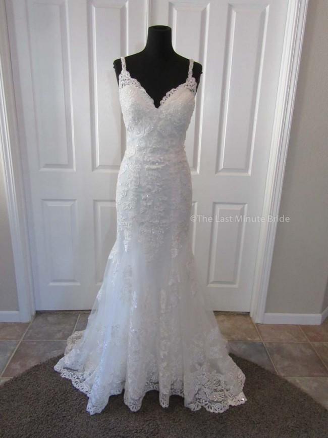The Last Minute Bride Olivia