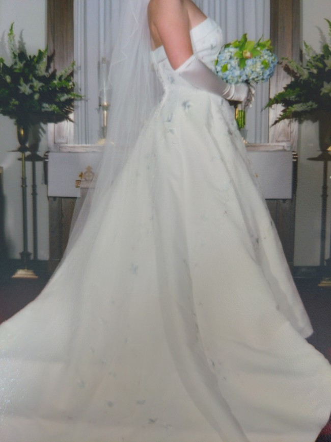 David's Bridal CT3052