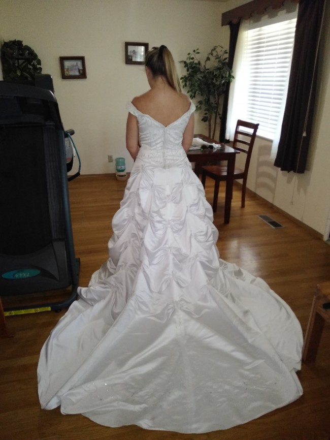 David's Bridal, T9303