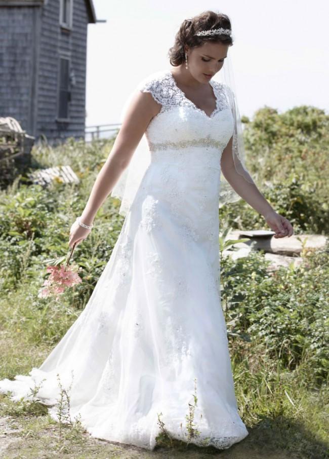 David's Bridal Cap Sleeve Lace over Satin