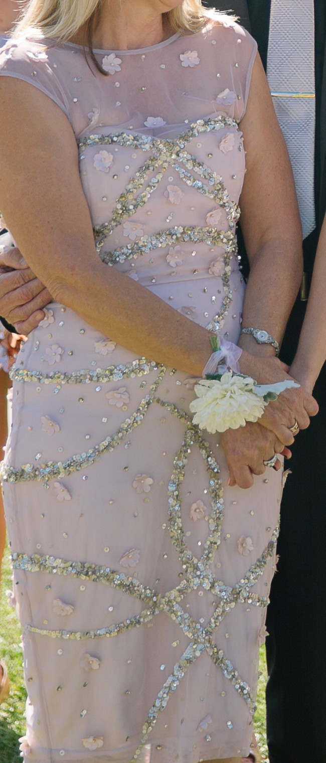 Rachel Gilbert Palomo dress