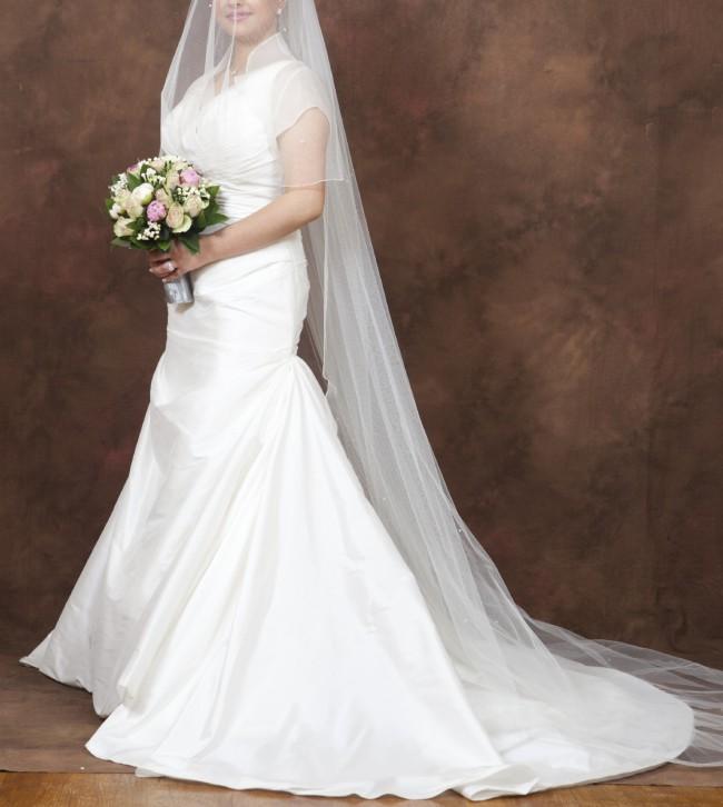 Pronovias Diamante Gown