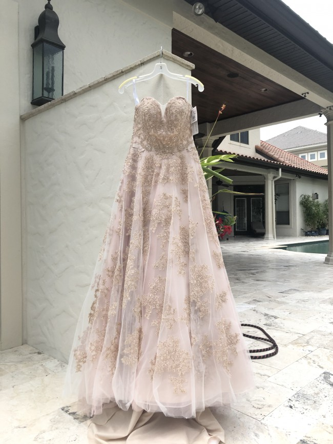 Oleg Cassini Cwg767 blush