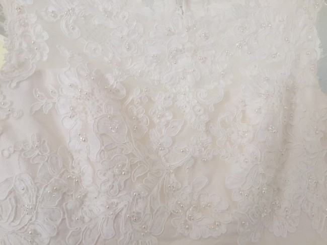 Paloma Blanca Silk Dupioni with French Alençon Lace