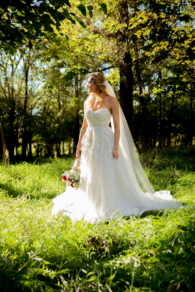 Hayley Paige Star Gown
