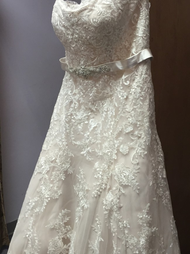 Morilee Ivory/Champagne B1410