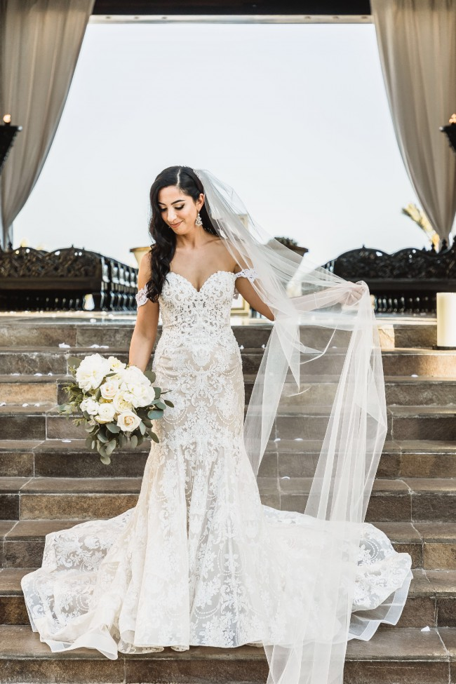 Allure Couture, Fit & Flare
