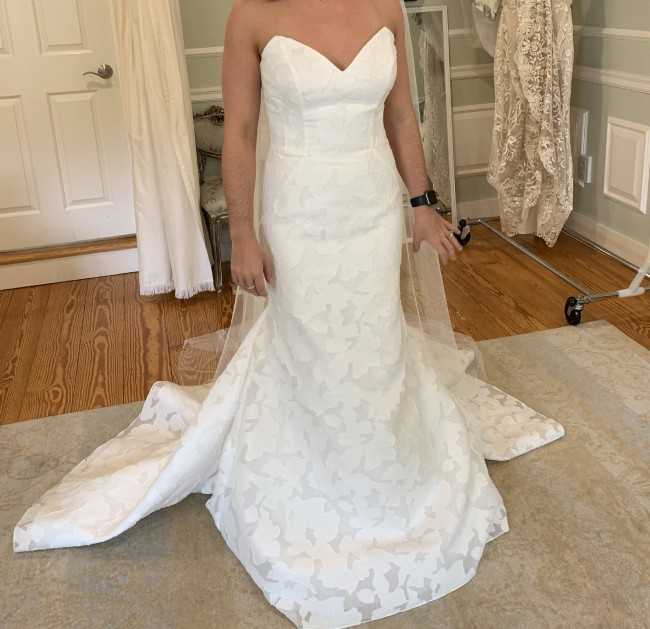 Anne Barge Walker Gown (Blue Willow Collection) Customized