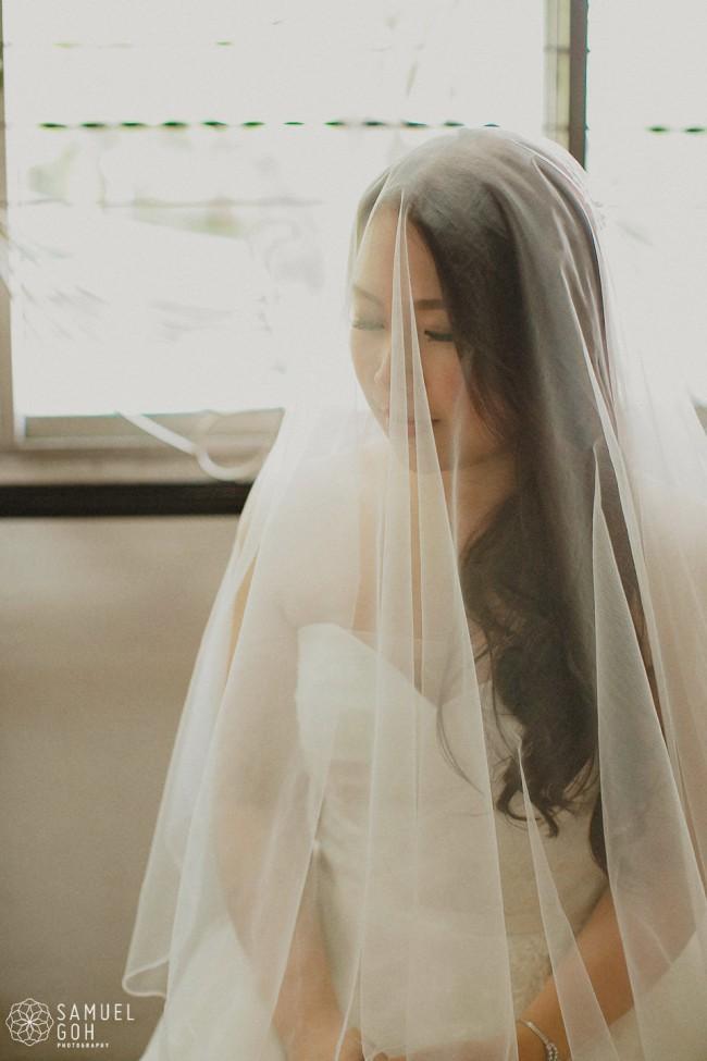 Amsale 'Erin' Lace Appliqué Organza Ballgown (Item #10414