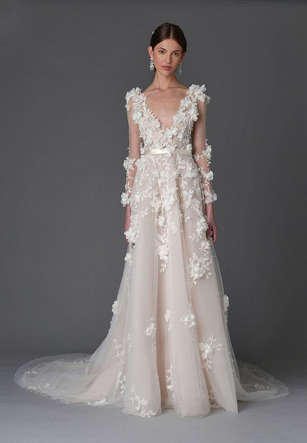 Marchesa Orchid