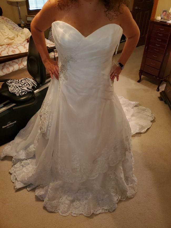 Sophia Tolli Mallory Y21264