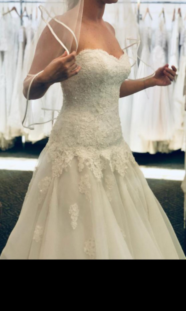 Paloma Blanca Princess gown