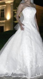 David's Bridal V8822